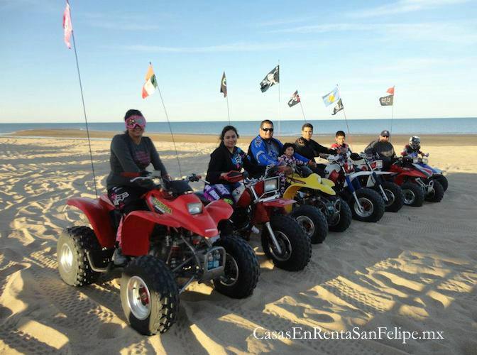 Rentas de ATV (Todo Terreno) en San Felipe