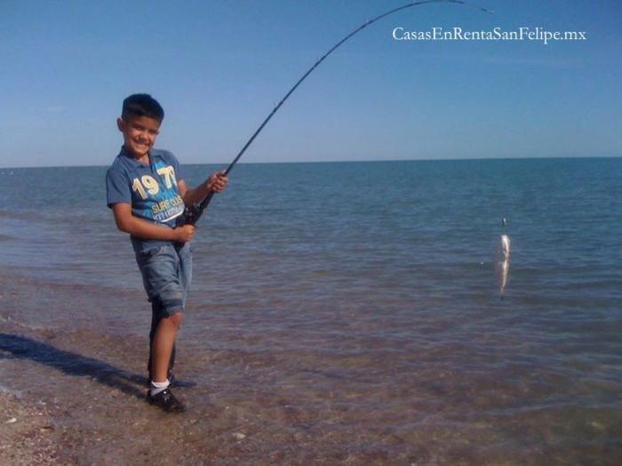De Pesca en San Felipe, México